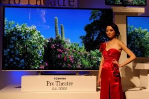 Toshiba Pro Theatre 84L9300
