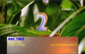 bbc2-bs