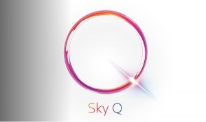 Sky Q Logo Silver
