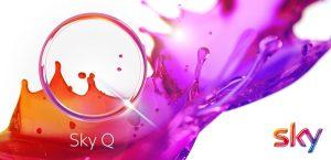 Sky Q Logo Fluid