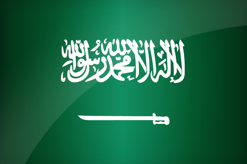 Saudi Arabia to launch sports channels